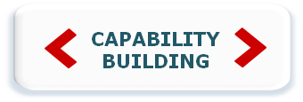 Capability Building1